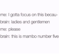 Brain, Focus, and Mambo: me: I gotta focus on this becau-  brain: ladies and gentlemen  me: please  brain: this is mambo number five