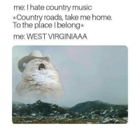 Music, Country Music, and Home: me: I hate country music  *Country roads, take me home.  To the place l belong*  me: WEST VIRGINIAAA