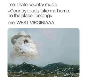 Dank, Memes, and Music: me: I hate country music  *Country roads, take me home  To the place I belong*  me: WEST VIRGINIAAA meirl by Arwres MORE MEMES