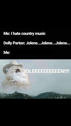 Meirl by staticman5000 MORE MEMES: Me: I hate country music  Dolly Parton: Jolene...Jolene...Jolene...  Me:  JOLEEEEEEEEEEN!!! Meirl by staticman5000 MORE MEMES
