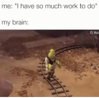 """Funny, Ghetto, and Memes: me: """"I have so much work to do""""  my brain  YT Mini What did I just watch?! 😂😂 • ➫➫➫ Follow @ghetto for more funny post daily!"""
