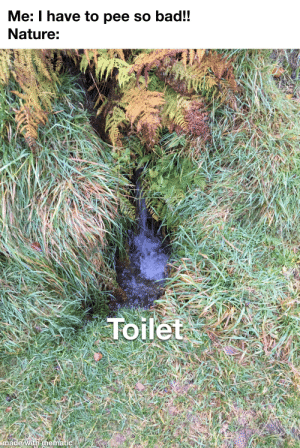 Nature is incredible: Me: I have to pee so bad!!  Nature:  AM4  Toilet  made with mematic Nature is incredible