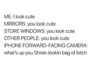 Me🗿irl by FractalThrottle MORE MEMES: ME: I look cute  MIRRORS: you look cute  STORE WINDOWS: you look cute  OTHER PEOPLE: you look cute  IPHONE FORWARD-FACING CAMERA:  what's up you Shrek-lookin bag of bitch Me🗿irl by FractalThrottle MORE MEMES