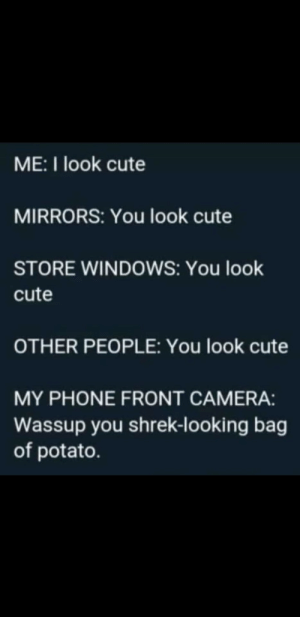 Cute, Phone, and Shrek: ME:I look cute  MIRRORS: You look cute  STORE WINDOWS: You look  cute  OTHER PEOPLE: You look cute  MY PHONE FRONT CAMERA:  Wassup you shrek-looking bag  of potato. Me irl