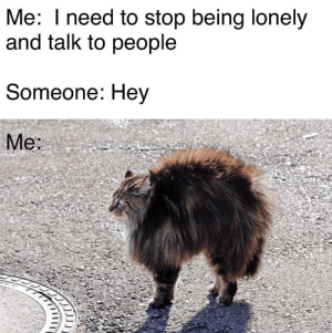 Dank, Friends, and Memes: Me: I need to stop being lonely  and talk to people  Someone: Hey  Me: why i have no friends by KenzoidYT MORE MEMES