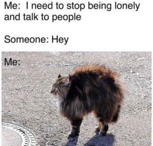 Dank, Memes, and Target: Me: I need to stop being lonely  and talk to people  Someone: Hey  Me Meirl by GroundbreakingTank3 MORE MEMES