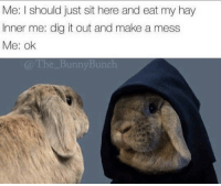 Dig, Make A, and Hay: Me: I should just sit here and eat my hay  Inner me: dig it out and make a mess  Me: ok  unny Bunc