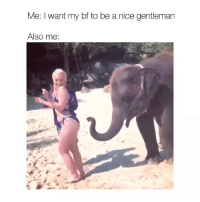 Friday, Happy, and Girl Memes: Me: I want my bf to be a nice gentleman  Also me: Happy Friday!