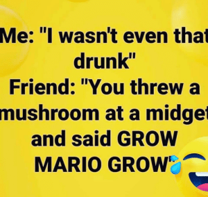 "Drunk, Mario, and Terrible Facebook: Me: ""I wasn't even that  drunk""  Friend: ""You threw a  mushroom at a midget  and said GROW  MARIO GROW Grow"