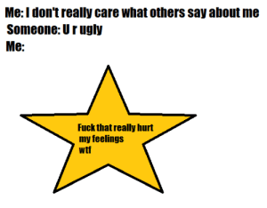 meirl by imso_lo_w MORE MEMES: Me:Idon't really care what others say about me  Someone: Urugly  Me:  Fuck that really hurt  my feelings  wtf meirl by imso_lo_w MORE MEMES