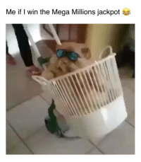 """Mood af 😂😂💀 song """" Figure it out"""" by @leveonbell @luisrmiami: Me if I win the Mega Millions jackpot Mood af 😂😂💀 song """" Figure it out"""" by @leveonbell @luisrmiami"""