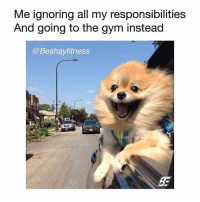 Feels so good 😅😃 @beshayfitness: Me ignoring all my responsibilities  And going to the gvm instead  @Beshayfitness Feels so good 😅😃 @beshayfitness