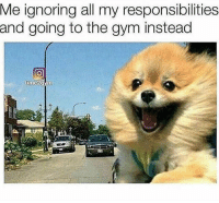 Gym, Life, and Good: Me ignoring all my responsibilities  and going to the gym instead The good life. @time2gym