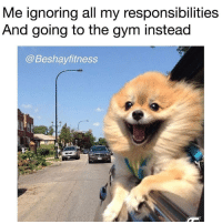 Gym, All, and Ignoring: Me ignoring all my responsibilities  And going to the qym instead  @Beshayfitness 😂😂😂😂