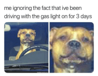 Driving, Teen Mom, and Dank Memes: me ignoring the fact that ive been  driving with the gas light on for 3 days @gary_from_teen_mom