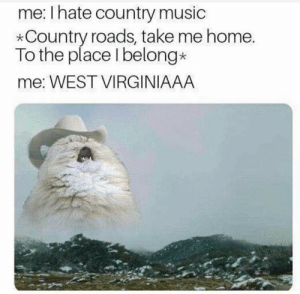 Dank, Memes, and Music: me: Ihate country music  *Country roads, take me home.  To the place Ibelong*  me: WEST VIRGINIAAA WEST VIRGINIAAA by DaPookums1 MORE MEMES