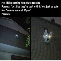 9gag, Memes, and Parents: Me: I'lU be coming home late tonight  Parents: *act like they're cool with it* ok, just be safe  Me: *comes home at 11pm*  Parents: I smell trouble...⠀ 📸 miyu_m0102 | TW⠀ -⠀ husky parents late 9gag