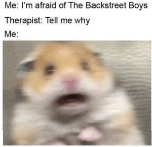 Meirl: Me: I'm afraid of The Backstreet Boys  Therapist: Tell me why  Me: Meirl