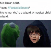 ~Dobby: Me: I'm an adult.  SeeS  #FantasticBeasts  Me to me: You're a wizard. Amagical child  wizard ~Dobby