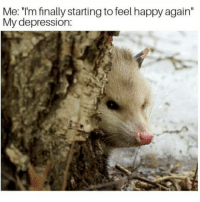 "Memes, Best, and Depression: Me: ""I'm finally starting to feel happy again""  My depression: u wot m8 (follow @chardonnayandxanax for ze best opossums stealing your happy thoughts 👈👈👈)"