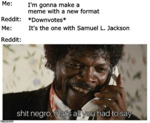 Dank, Meme, and Memes: Me:  I'm gonna make a  meme with a new format  Reddit: *Downvotes*  Me:  Reddit:  It's the one with Samuel L. Jackson  shit negro, thads all yoy had to say New format on the rise by Jamedu MORE MEMES