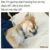 Dank, Life, and Memes: Me: I'm gonna start having fun on my  days off. Life is too short.  Me on my day off  @Memes 😅