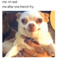 everyone disappoints me: me: im sad  me after one french fry: everyone disappoints me