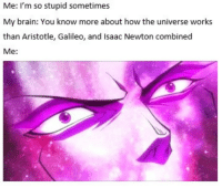 Memes, Aristotle, and Brain: Me: I'm so stupid sometimes  My brain: You know more about how the universe works  than Aristotle, Galileo, and Isaac Newton combined  Me https://t.co/GStKsHdTZW