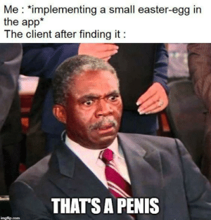(Not real, don't worry): Me *implementing a small easter-egg in  the app*  The client after finding it  THATS A PENIS  imgflip.com (Not real, don't worry)