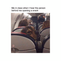 Memes, 🤖, and Class: Me in class when I hear the person  behind me opening a snack 😑