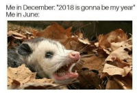 """Dank Memes, December, and Gonna: Me in December: """"2018 is gonna be my year""""  Me in June:"""