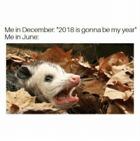 """Funny, December, and Gonna: Me in December: """"2018 is gonna be my year  Me in June: Same @shitheadsteve"""