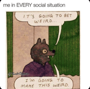 Weird, MeIRL, and Make: me in EVERY social situation  T'S GOING TO GET  WEIRD.  hunderangeon  I m GDING TO  MAKE THIS WEIRD.  RRINTE Meirl