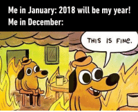 Dank, Quite, and 🤖: Me in January: 2018 will be my year!  Me in December:  THIS IS FINe.  OC Things didn't go quite as planned.