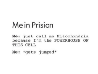 Mitochondria, Jumped, and Cell: Me in Prision  Me: just call me Mitochondria  because I'm the POWERHOUSE OF  THIS CELL  Me: *gets jumped*