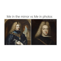 Y tho: Me in the mirror vs Me in photos  RT MEMES Y tho