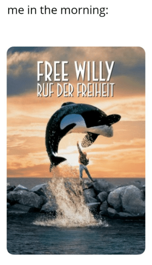 It means 'call of freedom': me in the morning:  FREE WILLY  BUF DER FREIHEIT It means 'call of freedom'