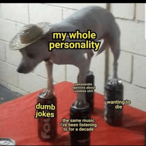 Me_irl by buffalo_king275 MORE MEMES: Me_irl by buffalo_king275 MORE MEMES