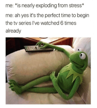 Adulting on fleek👍🏻: me: *is nearly exploding from stress*  me: ah yes it's the perfect time to begin  the tv series I've watched 6 times  already Adulting on fleek👍🏻
