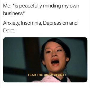 Bitch, Dank, and Memes: Me: *is peacefully minding my own  business*  Anxiety, Insomnia, Depression and  Debt:  TEAR THE  BITCH APART! meirl by SerpentesHi55 MORE MEMES