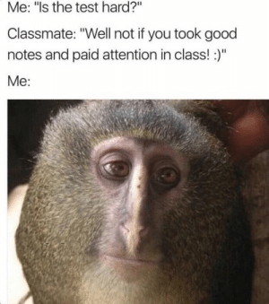 """Dank, Memes, and Target: Me: """"Is the test hard?""""  Classmate: """"Well not if you took good  notes and paid attention in class! )""""  Me: me_irl by nojumper4484 MORE MEMES"""