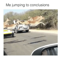 Funny, Conclusion, and Jumps to Conclusions: Me jumping to conclusions