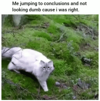 Facts !!😂💀: Me jumping to conclusions and not  looking dumb cause i was right. Facts !!😂💀