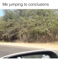 Memes, 🤖, and Conclusion: Me jumping to conclusions It me