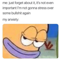 Hello, Memes, and Anxiety: me: just forget about it, it's not even  important I'm not gonna stress over  some bullshit again  my anxiety Hello, it me