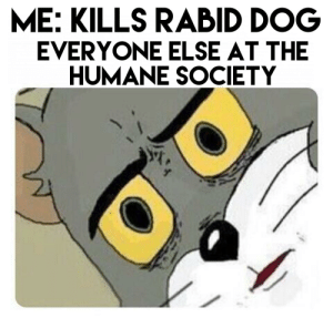 People be nosey: ME: KILLS RABID DOG  EVERYONE ELSE AT THE  HUMANE SOCIETY People be nosey