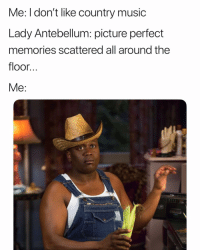 Giddy up (Twitter   LuciferTheGay): Me: l don't like country music  Lady Antebellum: picture perfect  memories scattered all around the  floor..  Me: Giddy up (Twitter   LuciferTheGay)