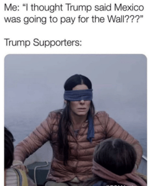 "Y'all trump supporters wildin' by RookFresno MORE MEMES: Me: ""l thought Trump said Mexico  was going to pay for the Wall???""  Trump Supporters: Y'all trump supporters wildin' by RookFresno MORE MEMES"