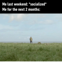 9gag, Introvert, and Memes: Me last weekend: 'socialized  Me for the next 2 months: Solitude is painful in youth, but delicious in the years of maturity - Check out our IG stories for more content! socialize solitude introvert 9gag