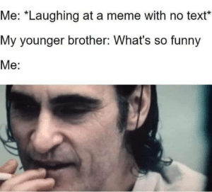 "Dumb shit: Me: ""Laughing at a meme with no text  My younger brother: What's so funny  Me: Dumb shit"